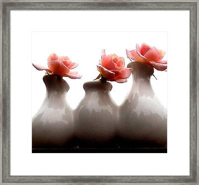 Cecil Brunner Roses  Framed Print by Karen Molenaar Terrell