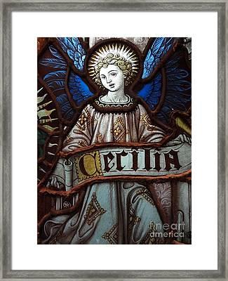 Cecilia Framed Print by Ed Weidman