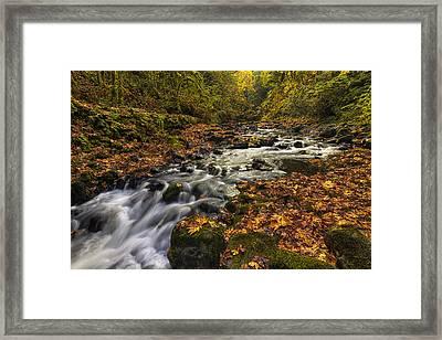 Cedar Creek 2 Framed Print