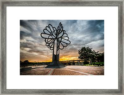 Cedar Rapids Five Seasons Tree At Sunset Framed Print
