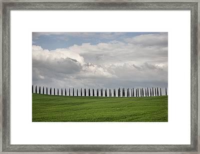 Framed Print featuring the photograph Cedar Sienna by Hugh Smith