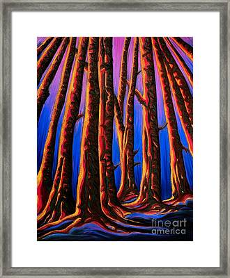 Cedars In Stanley Park Framed Print by Jo-Anne Elniski