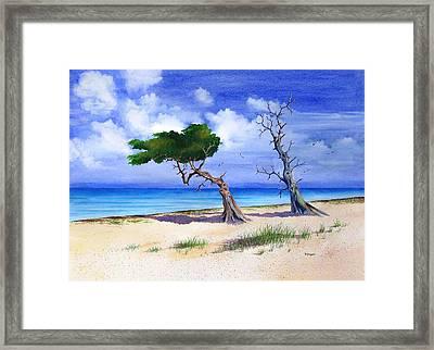 Cedars Last Stand Framed Print