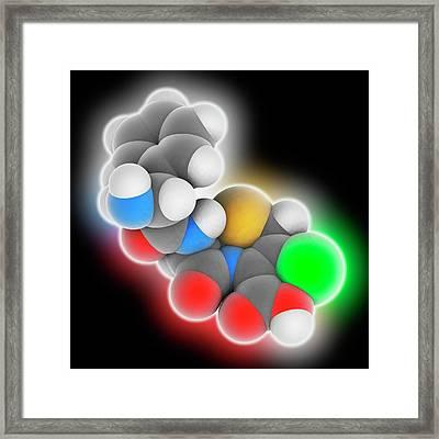 Cefaclor Drug Molecule Framed Print