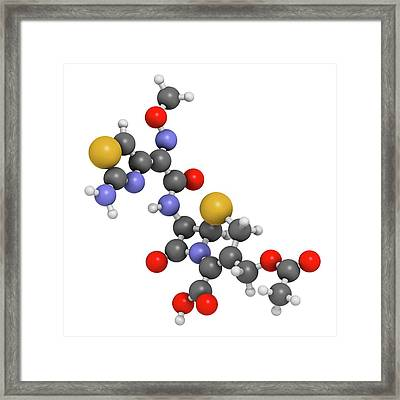 Cefotaxime Antibiotic Drug Molecule Framed Print by Molekuul