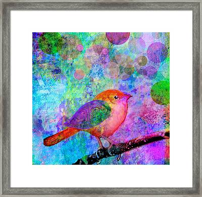 Celebrate Framed Print by Robin Mead
