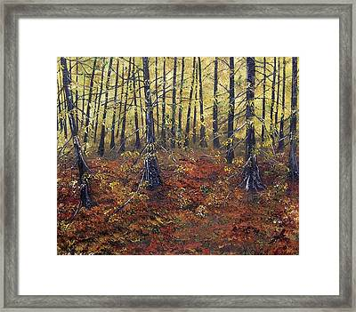 Celebrating The Equinox Framed Print by Lisa Aerts