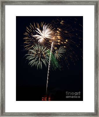 Framed Print featuring the photograph Celebration by Dale Nelson