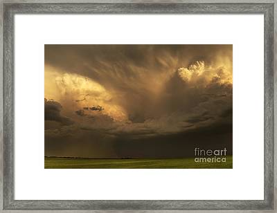 Celebration Of Life Framed Print