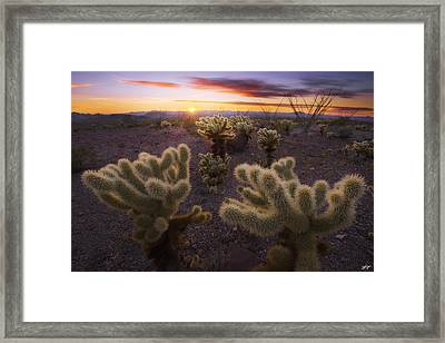 Celebration Framed Print by Peter Coskun