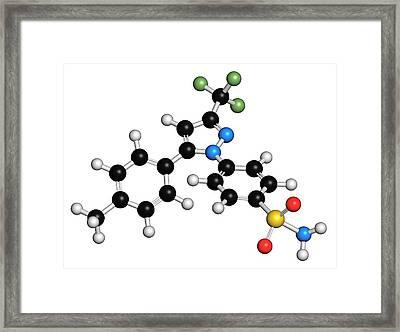 Celecoxib Anti-inflammatory Drug Molecule Framed Print