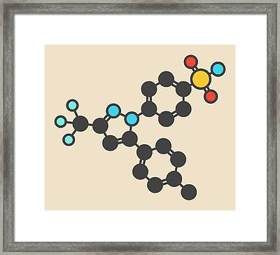 Celecoxib Inflammation Drug Molecule Framed Print by Molekuul