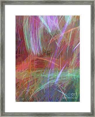 Celeritas 29 Framed Print