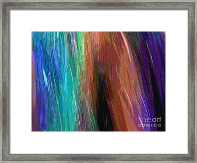 Celeritas 71 Framed Print