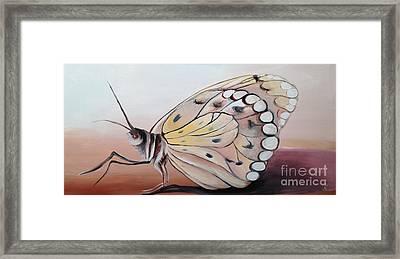 Celine's Butterfly Framed Print