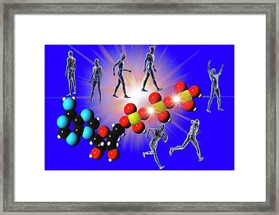 Cell Metabolism Framed Print by Carol & Mike Werner