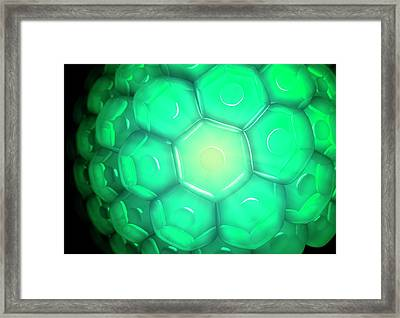 Cell Wall Framed Print