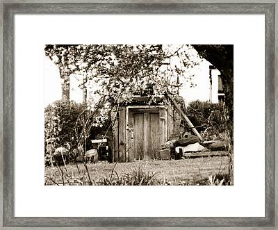Cellar Door Framed Print by Andrea Dale