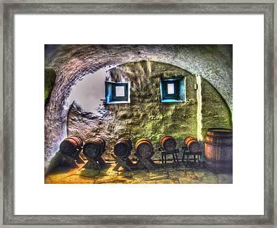 Cellar Silence Framed Print by Frank SantAgata