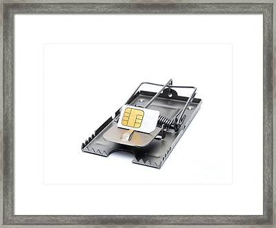 Cellphone Trap Framed Print by Sinisa Botas