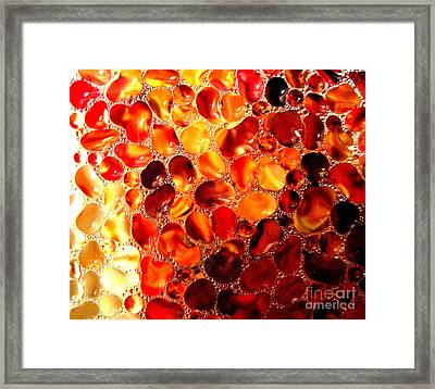 Framed Print featuring the photograph Cellular by Kathy Bassett