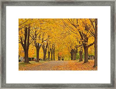 Cemetery In Autumn Framed Print by Gail Maloney