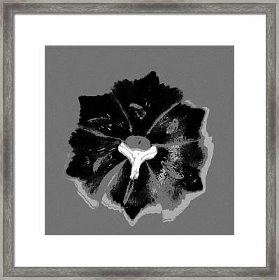 Center Framed Print by Lori Bourgault