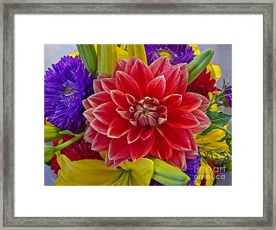 Center Of Attention Framed Print