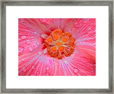 Center Of Attention Framed Print by Rebecca Flaig