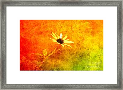 Center Of The Glory. Framed Print by Beverly Guilliams