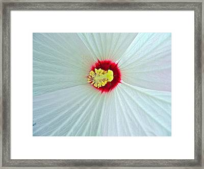 Center Of The Universe Framed Print