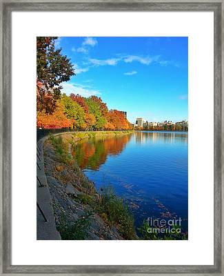 Central Park Autumn Landscape Framed Print