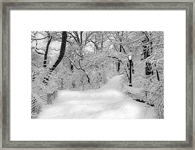 Central Park Dressed Up In White Framed Print by Susan Candelario