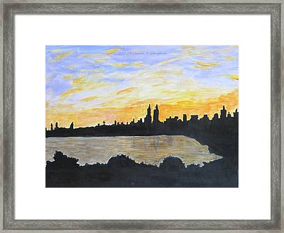 Central Park In Newyork Framed Print