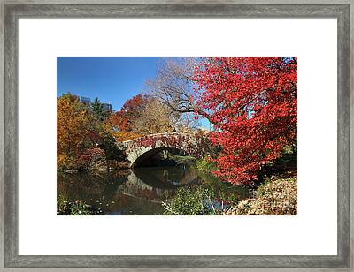 Framed Print featuring the photograph Central Park In The Fall-1 by Steven Spak