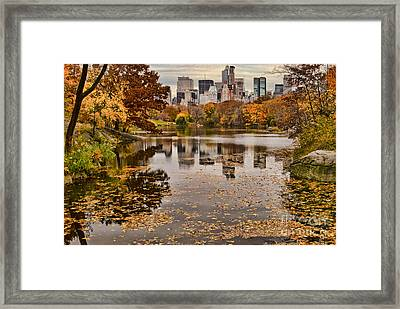 Central Park In The Fall New York City Framed Print