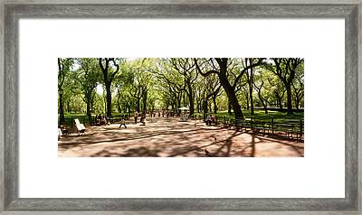 Central Park In The Spring Time, New Framed Print by Panoramic Images