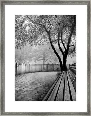 Central Park Framed Print by Jerry Winick