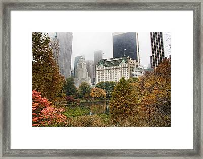 Central Park Framed Print by June Marie Sobrito