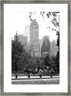 Central Park Framed Print by Kristi Jacobsen