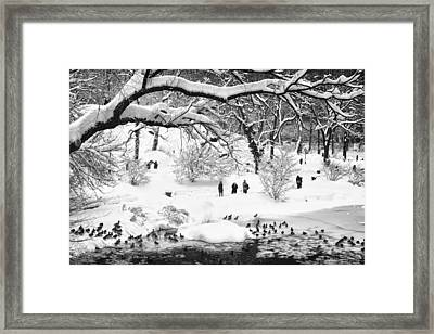 Framed Print featuring the photograph Central Park Lake Blizzard by Dave Beckerman