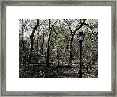 Central Park Lamppost Framed Print