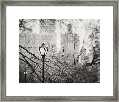Central Park Lamppost In New York City Framed Print by Lisa Russo
