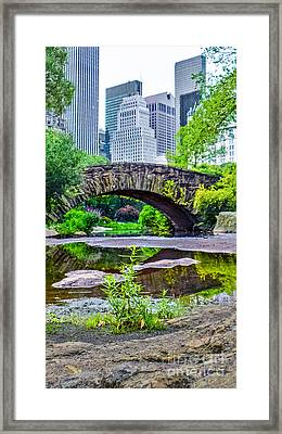 Central Park Nature Oasis Framed Print