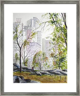Central Park Stroll Framed Print