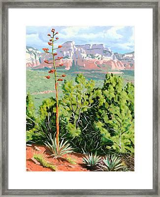 Century Plant - Sedona Framed Print by Steve Simon