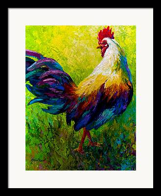 Livestock Framed Prints