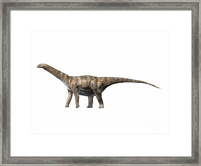 Cetiosaurus Oxoniensis, Middle Jurassic Framed Print by Nobumichi Tamura