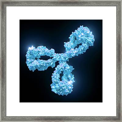 Cetuximab Chemotherapy Drug Framed Print by Maurizio De Angelis