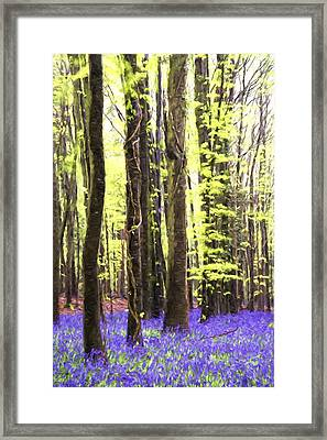 Cezanne Style Digital Painting Vibrant Bluebell Forest Landscape Framed Print